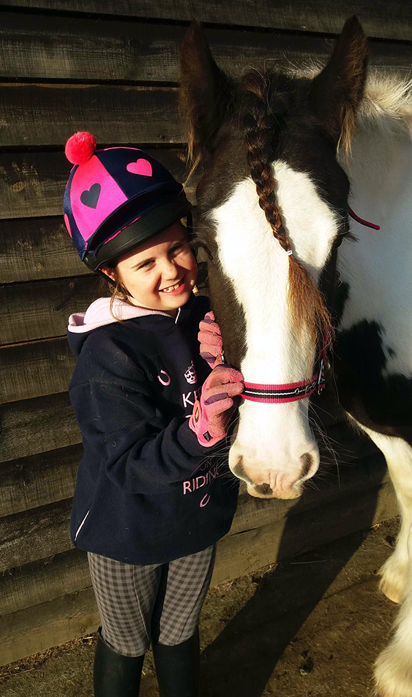 Rehome a Redwings rescue horse